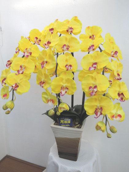 光触媒造花コチョウラン(黄色・陶器付)のイメージ