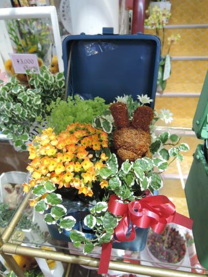 季節の寄せ鉢のイメージ