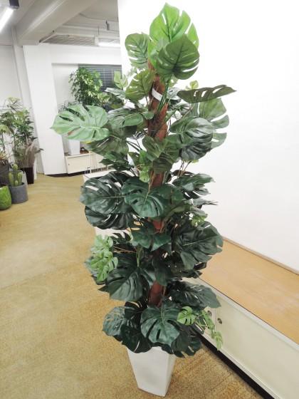 造花アート観葉植物(モンステラ)のイメージ