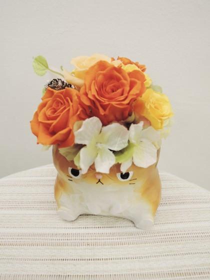 ネコのプリザーブドアレンジのイメージ